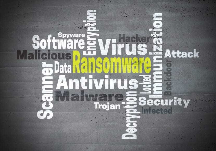 Ransomware antivirus immunization word cloud concept.